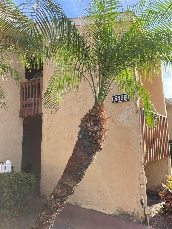 3429 Clark Road #229, Sarasota, FL 34231 (MLS #A4503418) :: Godwin Realty Group