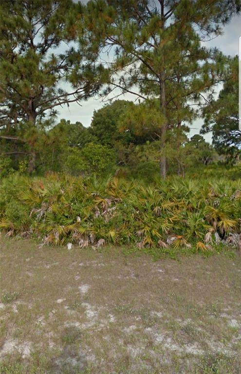2 Binnacle Road, Placida, FL 33946 (#A4503862) :: Caine Luxury Team