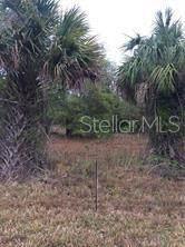 406 Leona Street, Port Charlotte, FL 33954 (MLS #A4504045) :: RE/MAX LEGACY