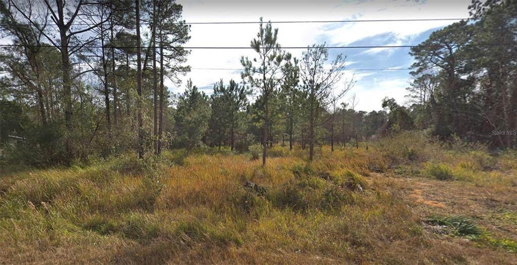 3349 Pine Oaks Lane - Photo 1