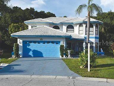6173 Nicole Court, Sarasota, FL 34243 (MLS #A4506540) :: Zarghami Group