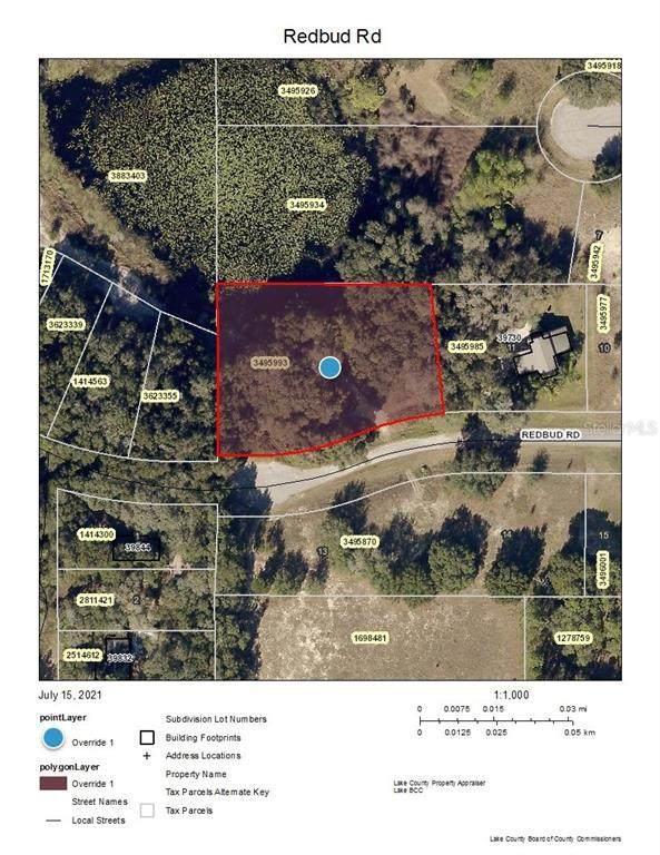 Redbud Road, Lady Lake, FL 32159 (MLS #A4507007) :: Kreidel Realty Group, LLC