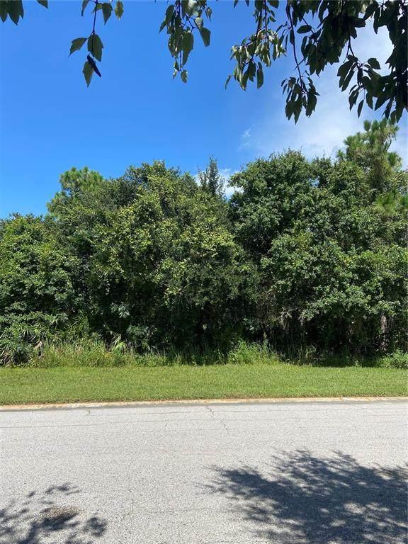 3702 162ND Avenue E, Parrish, FL 34219 (MLS #A4507518) :: CARE - Calhoun & Associates Real Estate