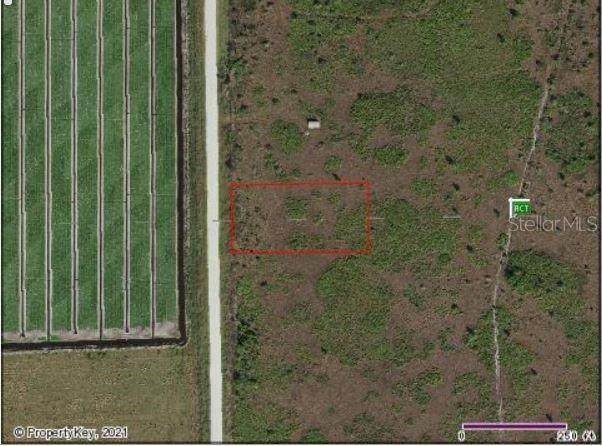 48055 Bermont Road, Punta Gorda, FL 33982 (MLS #A4508788) :: Everlane Realty
