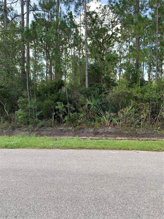 Corydon Avenue, North Port, FL 34286 (MLS #A4510052) :: Team Turner