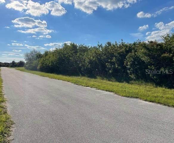 379 Findlay Street, Port Charlotte, FL 33954 (MLS #A4513017) :: Everlane Realty