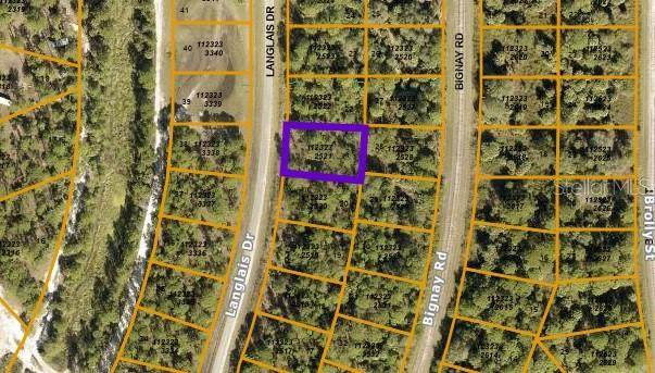Langlais Drive, North Port, FL 34288 (MLS #A4513339) :: The Duncan Duo Team