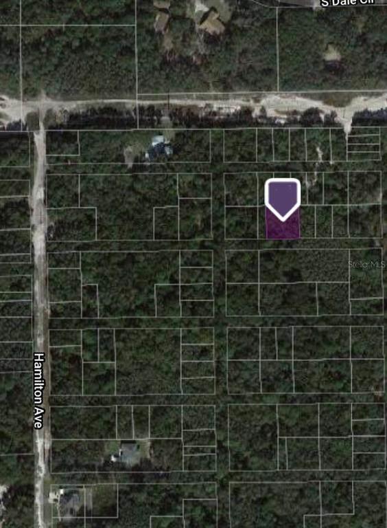 Baltimore Avenue, Orange City, FL 32763 (MLS #A4513564) :: Wolves Realty
