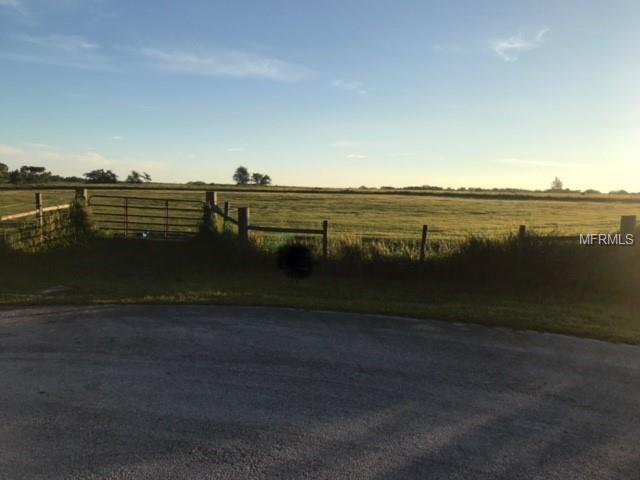 Brooke Lakes Drive, Fort Meade, FL 33841 (MLS #B4900092) :: The Duncan Duo Team