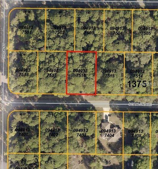 Scanlon Avenue, North Port, FL 34291 (MLS #C7247831) :: Griffin Group