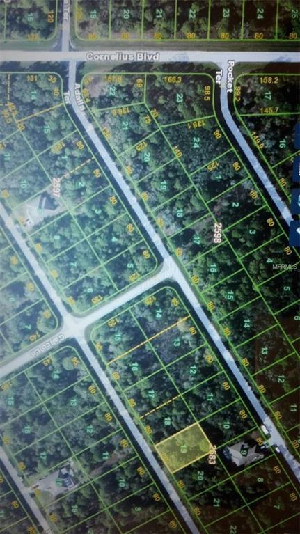 1443 Lace Terrace, Port Charlotte, FL 33953 (MLS #C7248111) :: Godwin Realty Group