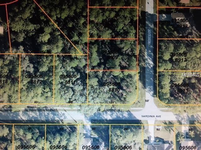 Caviar Street, North Port, FL 34286 (MLS #C7248728) :: Griffin Group