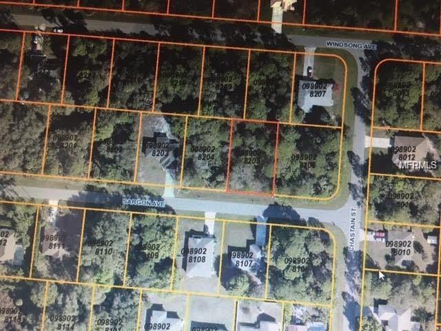 Sargon Avenue, North Port, FL 34287 (MLS #C7248745) :: Griffin Group