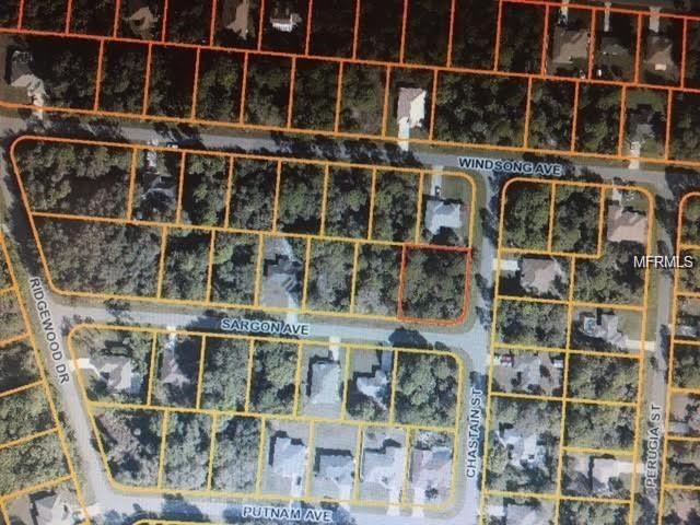 Chastain Street, North Port, FL 34287 (MLS #C7248747) :: Griffin Group