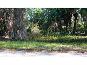 Hagerick Lane, North Port, FL 34288 (MLS #C7249556) :: Premium Properties Real Estate Services