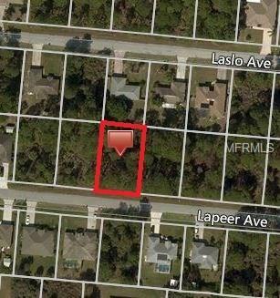 Lapeer Avenue, North Port, FL 34287 (MLS #C7249607) :: Griffin Group