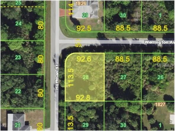 12069 Wellington Avenue, Port Charlotte, FL 33981 (MLS #C7250426) :: Premium Properties Real Estate Services