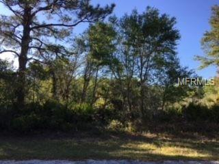 1521 Frisco Terrace, Port Charlotte, FL 33953 (MLS #C7250934) :: KELLER WILLIAMS CLASSIC VI