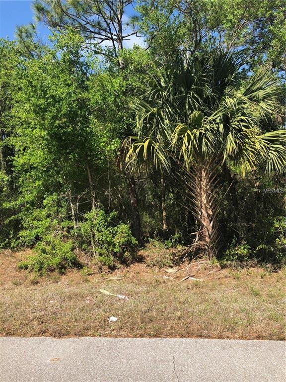 384 Zorita Street, Port Charlotte, FL 33954 (MLS #C7251182) :: G World Properties