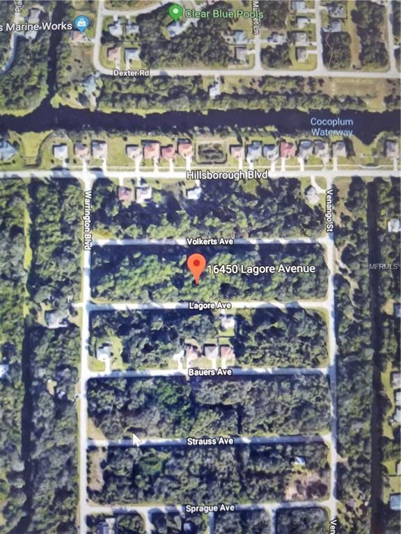 16450 Lagore Avenue, Port Charlotte, FL 33954 (MLS #C7251335) :: KELLER WILLIAMS CLASSIC VI