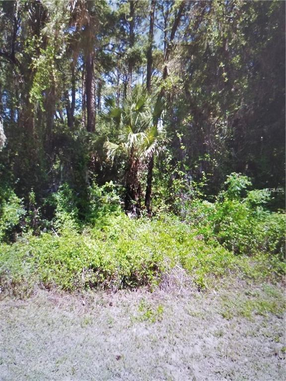 16450 Lagore Avenue, Port Charlotte, FL 33954 (MLS #C7251336) :: KELLER WILLIAMS CLASSIC VI