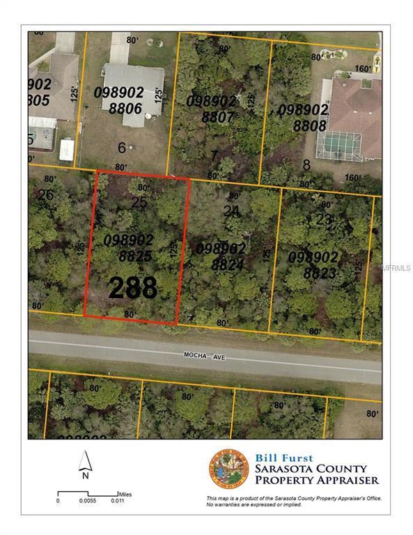 Mocha Avenue, North Port, FL 34286 (MLS #C7402083) :: The Price Group