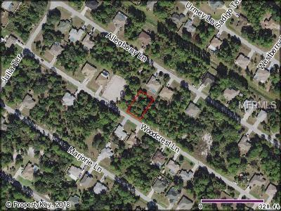 Woodcrest Lane, North Port, FL 34286 (MLS #C7403070) :: Mark and Joni Coulter | Better Homes and Gardens