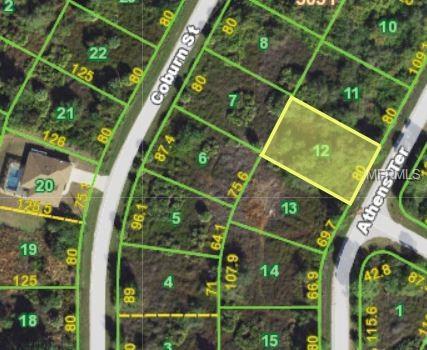 7313 Athens Terrace, Port Charlotte, FL 33981 (MLS #C7403834) :: The BRC Group, LLC