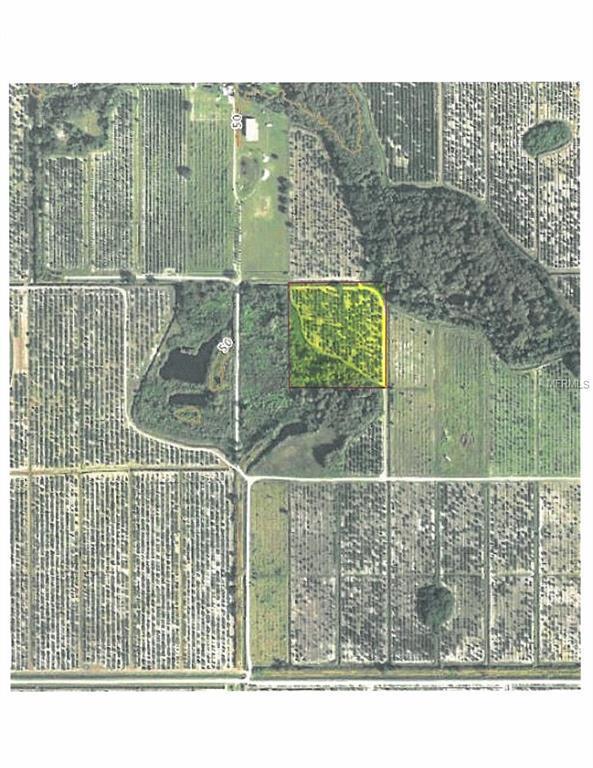 46180 Neal Road, Punta Gorda, FL 33982 (MLS #C7404500) :: Griffin Group