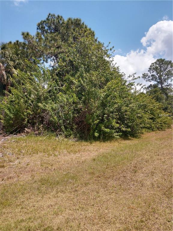 166 Antis Drive, Rotonda West, FL 33947 (MLS #C7404630) :: The Lockhart Team