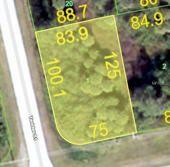 11456 Willmington Boulevard, Port Charlotte, FL 33981 (MLS #C7404813) :: KELLER WILLIAMS CLASSIC VI