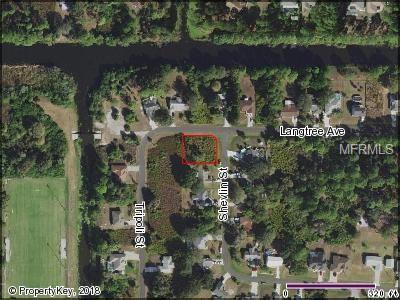 Langtree Avenue, North Port, FL 34286 (MLS #C7404954) :: The Duncan Duo Team