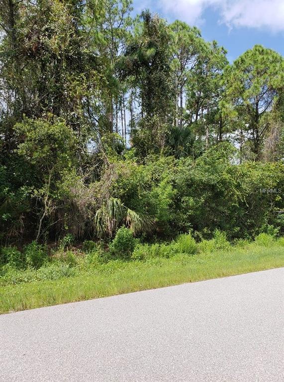 Chipley Avenue, North Port, FL 34286 (MLS #C7405056) :: G World Properties