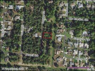 Portage Street, North Port, FL 34287 (MLS #C7405109) :: The Duncan Duo Team
