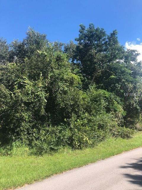 2192 Highlands Road, Punta Gorda, FL 33983 (MLS #C7405646) :: The Duncan Duo Team