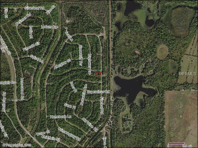 Fiveleaf Road, North Port, FL 34288 (MLS #C7406187) :: The Lockhart Team