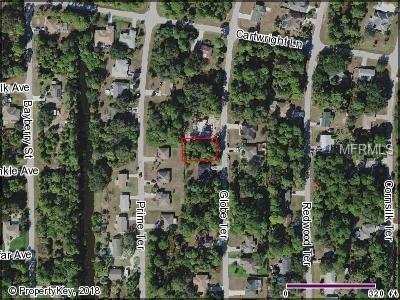 Globe Terrace, North Port, FL 34286 (MLS #C7406303) :: Homepride Realty Services