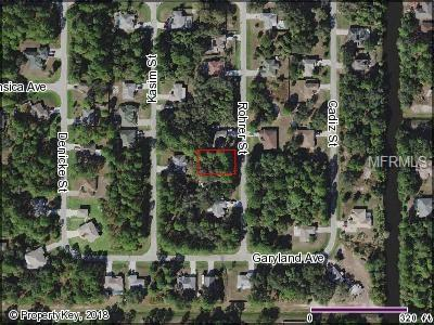 Rohrer Street, North Port, FL 34286 (MLS #C7406991) :: Team Touchstone