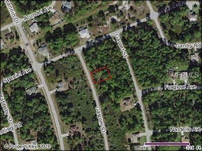 Gascom Street, North Port, FL 34288 (MLS #C7407383) :: Delgado Home Team at Keller Williams
