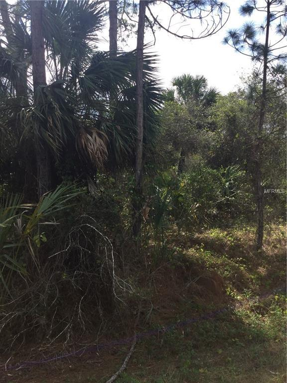 Lot 16 S Biscayne Drive, North Port, FL 34287 (MLS #C7409963) :: Homepride Realty Services