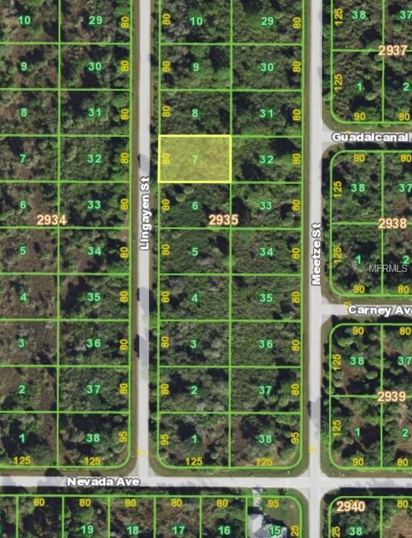 2136 Lingayen Street, Port Charlotte, FL 33953 (MLS #C7410084) :: Homepride Realty Services