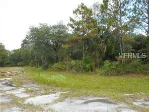 Trolley Road, North Port, FL 34291 (MLS #C7410190) :: Griffin Group