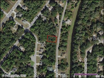 Nabatoff Street, North Port, FL 34288 (MLS #C7410194) :: Homepride Realty Services