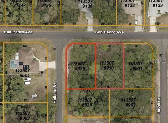 San Pedro Avenue, North Port, FL 34288 (MLS #C7410550) :: Jeff Borham & Associates at Keller Williams Realty