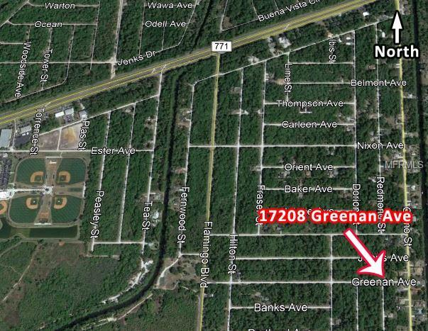 17208 Greenan Avenue, Port Charlotte, FL 33948 (MLS #C7410574) :: Homepride Realty Services