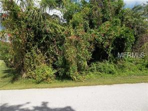 18570 Robinson Avenue, Port Charlotte, FL 33948 (MLS #C7413192) :: The Light Team