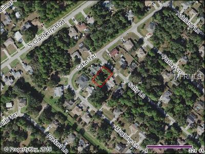 Sally Lane, North Port, FL 34286 (MLS #C7413506) :: Medway Realty