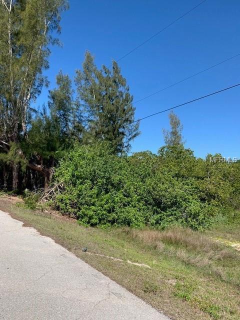 24210 Blackbeard Boulevard, Punta Gorda, FL 33955 (MLS #C7413629) :: Griffin Group