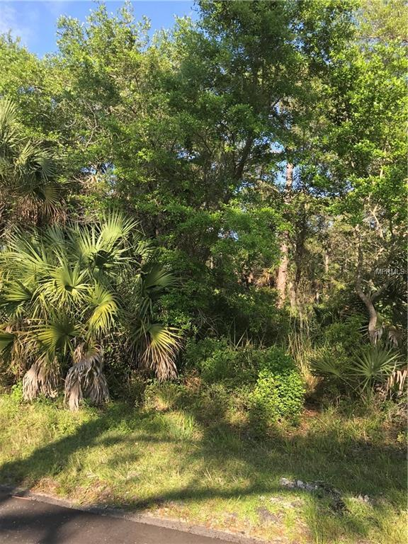 1300 Patton Street, Port Charlotte, FL 33953 (MLS #C7413657) :: Mark and Joni Coulter | Better Homes and Gardens