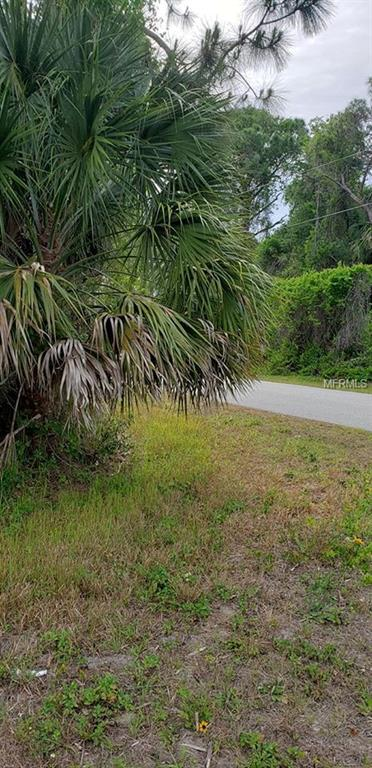 Jeannin Drive, North Port, FL 34288 (MLS #C7414292) :: The Duncan Duo Team